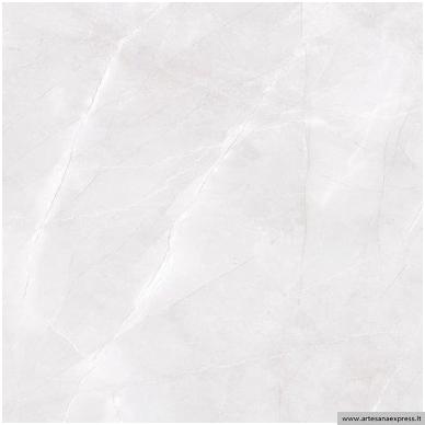 Abad gris 59,6x59,6 3