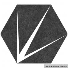 Trident Black Hex.25